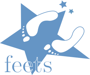 feets: feATURE eXTRACTOR FOR tIME sERIES — feets 0 4